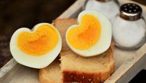 voordelen eiwitdieet