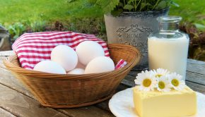 eiwitrijk dieet koolhydraatarm